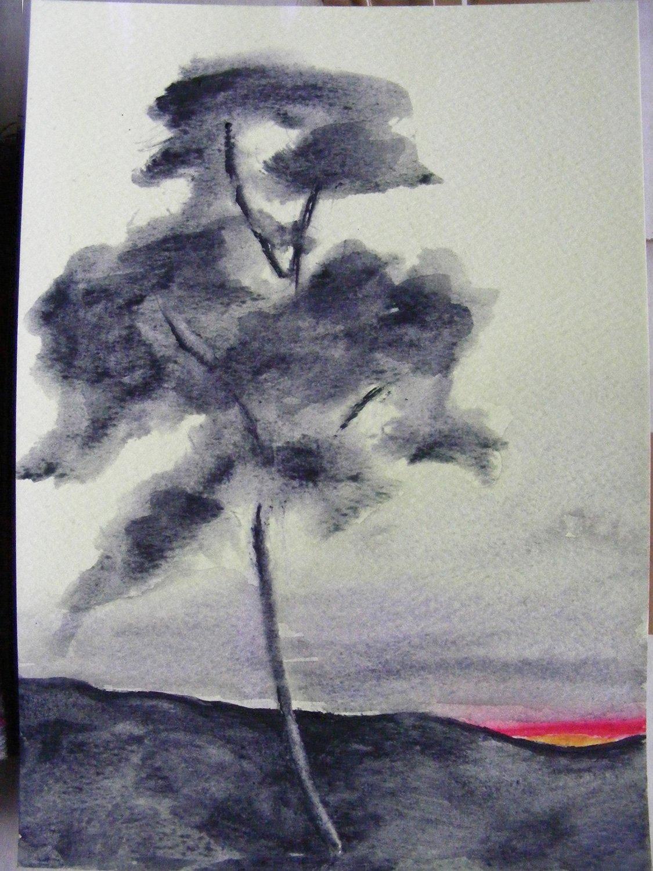 Sunset One tree